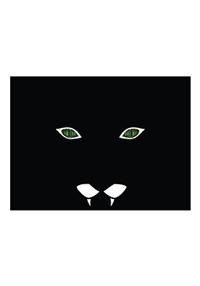 Black Cat Security